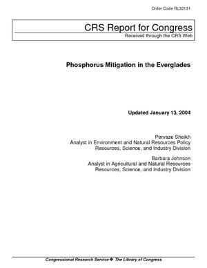 Phosphorus Mitigation in the Everglades