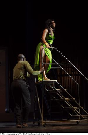 Primary view of object titled '[Performers with stairs]'.