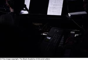 Primary view of object titled '[Singer playing piano]'.