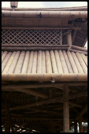 Primary view of object titled '[Bamboo Roof]'.