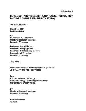 Primary view of object titled 'Novel Sorption/Desorption Process for Carbon Dioxide Capture (Feasibility Study)'.