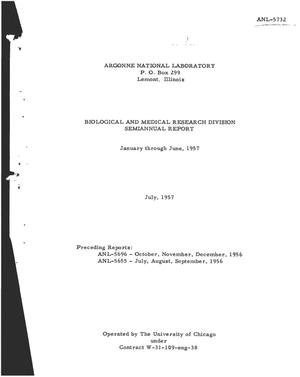 Primary view of object titled 'BIOLOGICAL AND MEDICAL RESEARCH DIVISION SEMIANNUAL REPORT FOR JANUARY THROUGH JUNE 1957'.