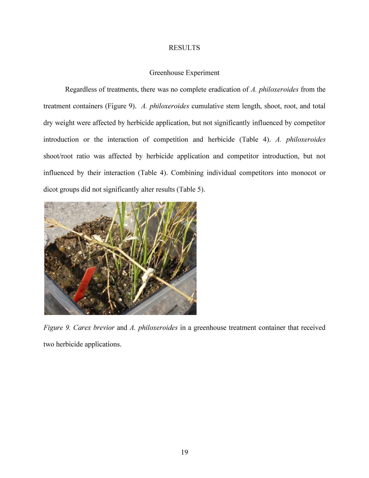 Integrating Selective Herbicide and Native Plant Restoration to Control Alternanthera philoxeroides (Alligator Weed)                                                                                                      19
