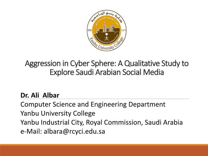 Aggression in Cyber Sphere: A Qualitative Study to Explore Saudi