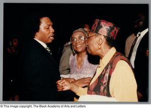 Primary view of object titled '[Black Music and the Civil Rights Movement Concert Photograph 34]'.