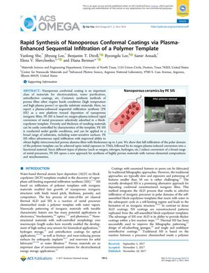 Primary view of object titled 'Rapid Synthesis of Nanoporous Conformal Coatings via Plasma-Enhanced Sequential Infiltration of a Polymer Template'.