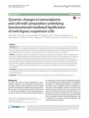 Primary view of object titled 'Dynamic changes in transcriptome and cell wall composition underlying brassinosteroid‑mediated lignification of switchgrass suspension cells'.