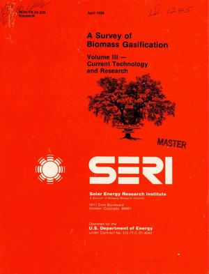 Primary view of object titled 'Survey of biomass gasification. Volume III. Current technology and research'.