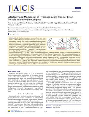Primary view of object titled 'Selectivity and Mechanism of Hydrogen Atom Transfer by an Isolable Imidoiron (III) Complex'.