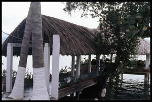 Primary view of object titled '[Thatch Roofed Pier]'.