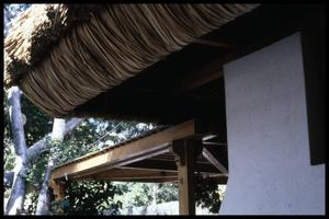Primary view of object titled '[Thatched Roof]'.