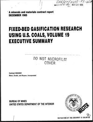 Primary view of object titled 'Fixed-bed gasification research using US coals. Volume 19. Executive summary'.