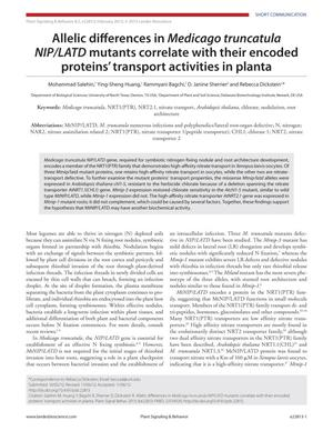 Allelic differences in Medicago truncatula NIP/LATD mutants correlate with their encoded proteins' transport activities in planta
