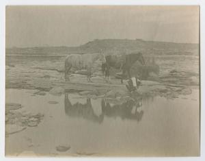 Primary view of object titled '[Edwin Sanders and his horse taking a break]'.