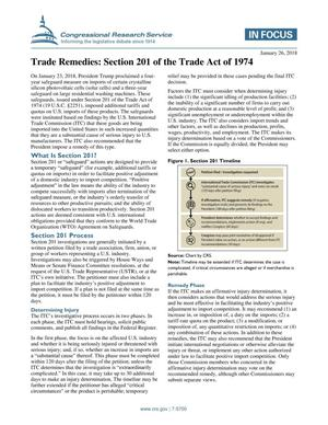 Primary view of object titled 'Trade Remedies: Section 201 of the Trade Act of 1974'.