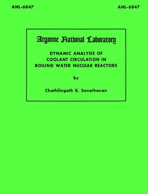 Primary view of object titled 'Dynamic Analysis of Coolant Circulation in Boiling Water Nuclear Reactors'.