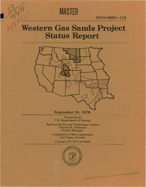 Primary view of object titled 'Western Gas Sands Project status report'.
