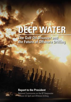 Primary view of object titled 'Deep Water: the Gulf Oil Disaster and the Future of Offshore Drilling'.
