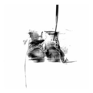 Primary view of object titled 'Portrait of Old Shoes 02'.