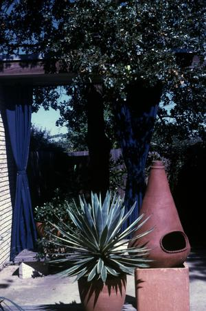Primary view of object titled 'Willowwood House'.