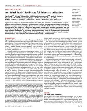 "An ""ideal lignin"" facilitates full biomass utilization"