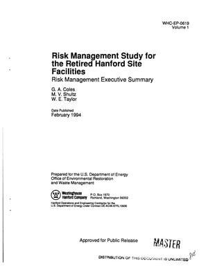 risk management executive summary