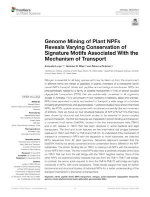 Primary view of object titled 'Genome Mining of Plant NPFs Reveals Varying Conservation of Signature Motifs Associated With the Mechanism of Transport'.