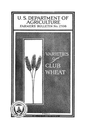 Primary view of object titled 'Varieties of club wheat.'.