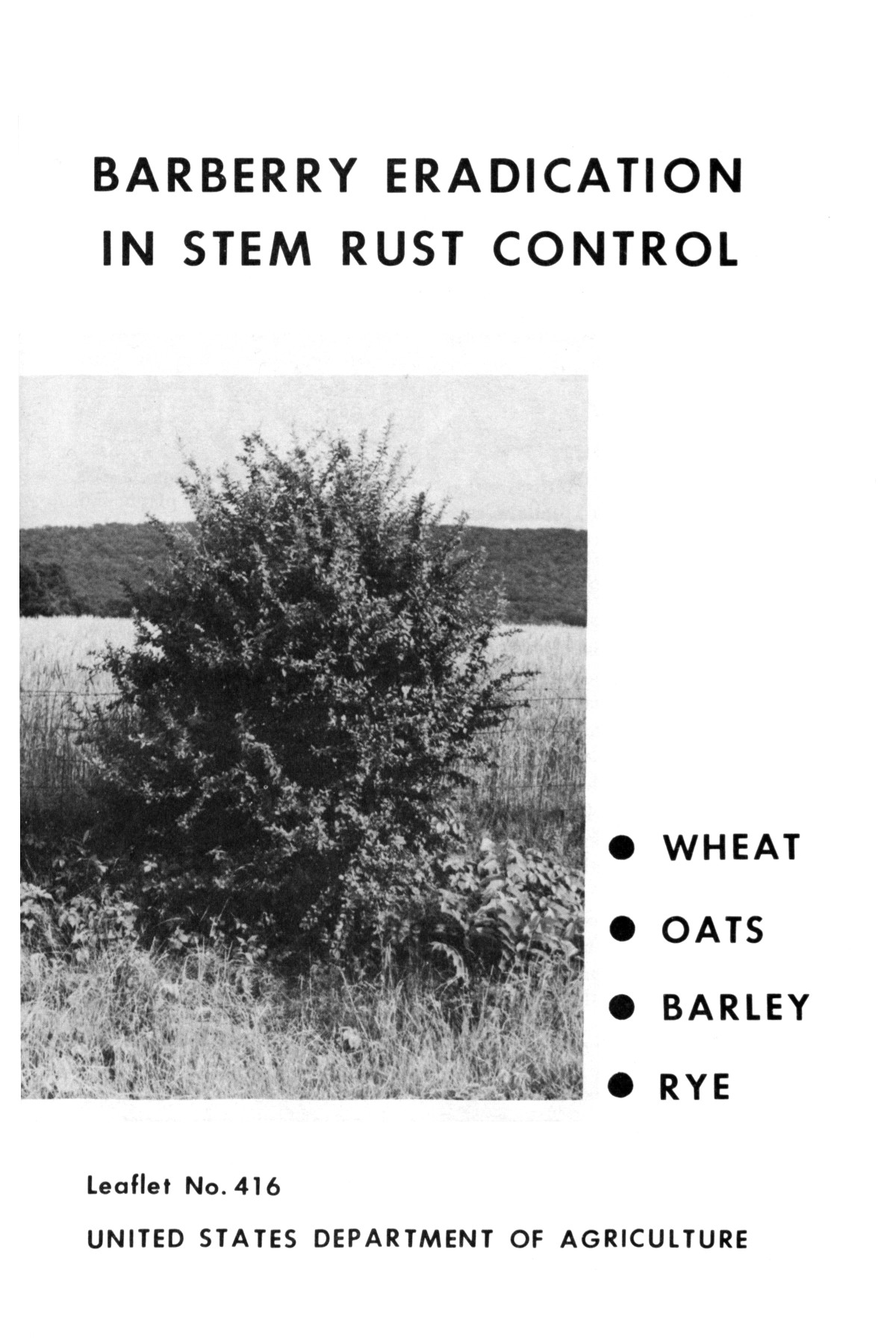Barberry eradication in stem rust control: wheat, oats, barley, rye.                                                                                                      1