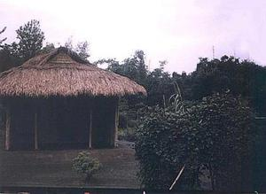 [Picture of a Meitei speakers house: Traditional house]