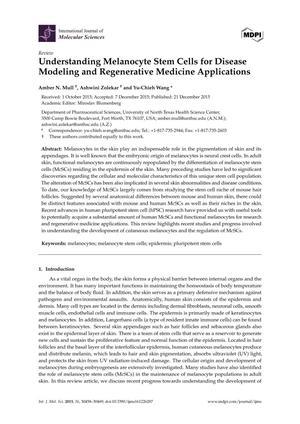 Understanding Melanocyte Stem Cells for Disease Modeling and Regenerative Medicine Applications
