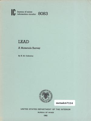 Primary view of object titled 'Lead: A Materials Survey'.