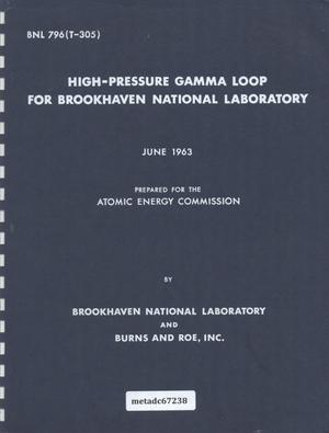 Primary view of object titled 'High-Pressure Gamma Loop for Brookhaven National Laboratory'.
