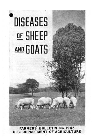 Diseases of sheep and goats.