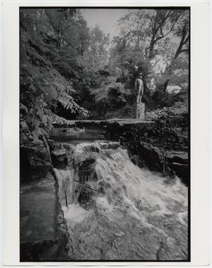 Primary view of object titled '[Jack Daniel's Cave Spring with Ducks]'.
