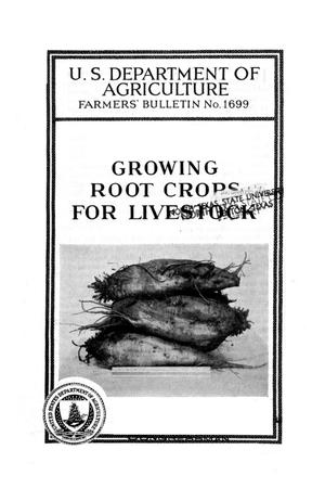Growing root crops for livestock.