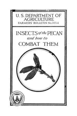 Primary view of Insects of the pecan and how to combat them.