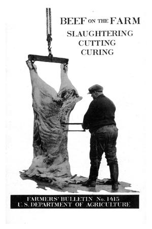 Primary view of object titled 'Beef on the farm : slaughtering, cutting, curing.'.