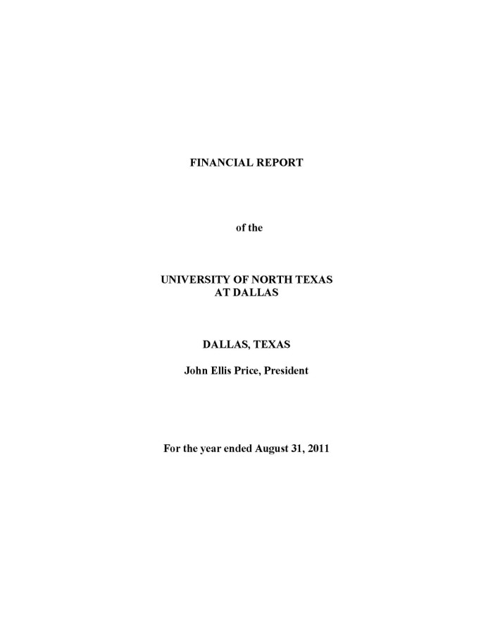 primary view of object titled financial report of the university of north texas at dallas