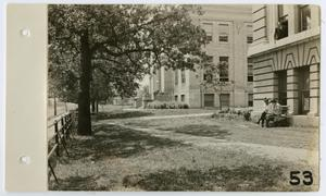 [Historical Building and Science Building at North Texas State Normal College]