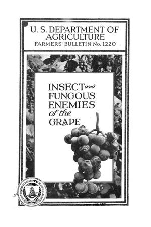Primary view of object titled 'Insect and fungous enemies of the grape.'.