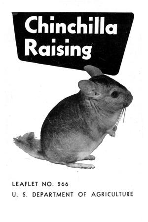 Primary view of object titled 'Chinchilla Raising.'.