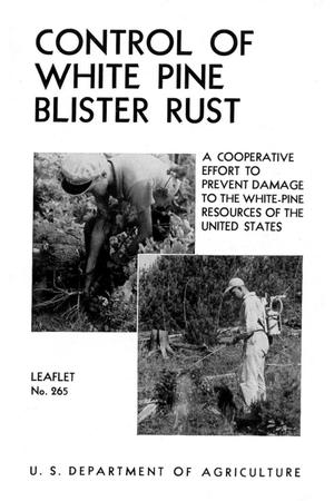 Primary view of object titled 'Control of White Pine Blister Rust : A Cooperative Effort to Prevent Damage to the White-Pine Resources of the United States.'.