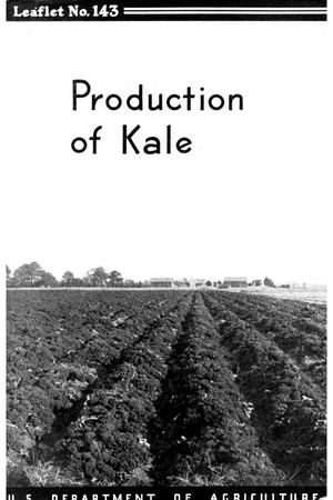 Primary view of object titled 'Production of kale.'.