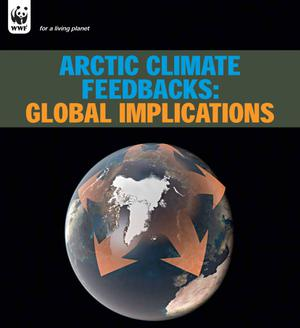 .Arctic Climate Feedbacks: Global Implications