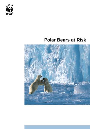 Primary view of object titled 'Polar Bears at Risk'.