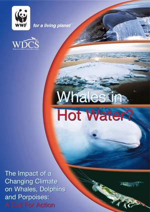 Whales in Hot Water? The Impact of a Changing Climate on Whales, Dolphins and Porpoises: A Call For Action