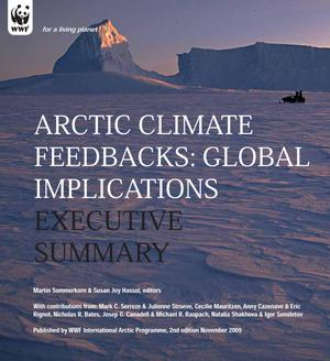 Primary view of object titled 'Arctic Climate Feedbacks: Global Implications Executive Summary'.
