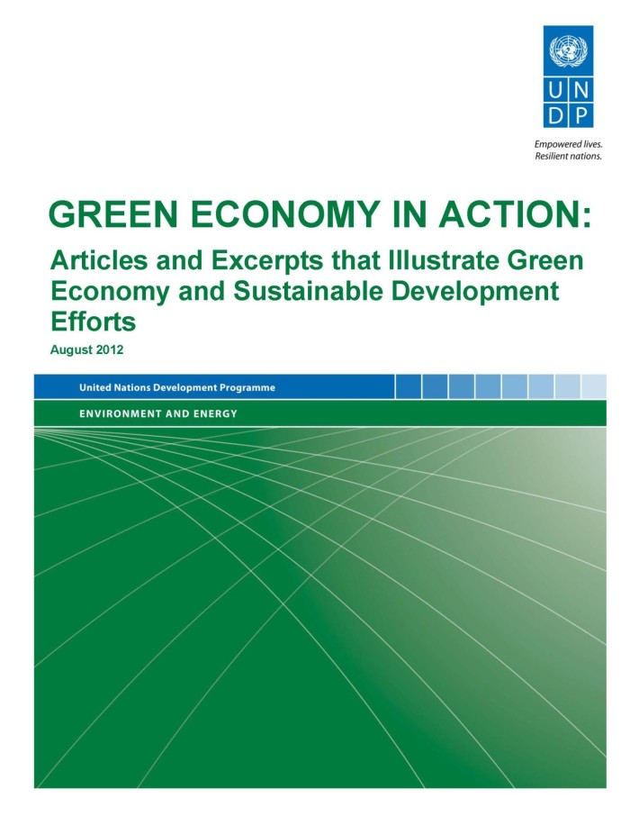 it role in green economy essay Role in ushering corporate environmentalism and making business firms green marketing oriented based on the data collected through a field survey, the paper made an assessment of the extent of environmental awareness.