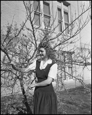 Primary view of object titled '[Margaret Cox with Tree]'.